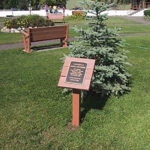 New Tree Planting Memorial